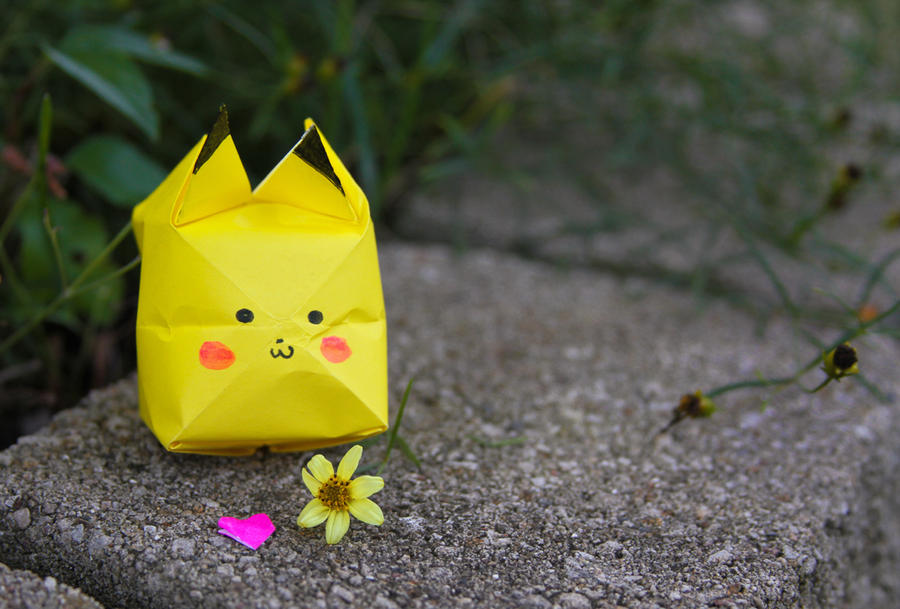 Pika Appears! by rainylake