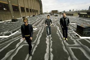 MuseTV - Original Photo