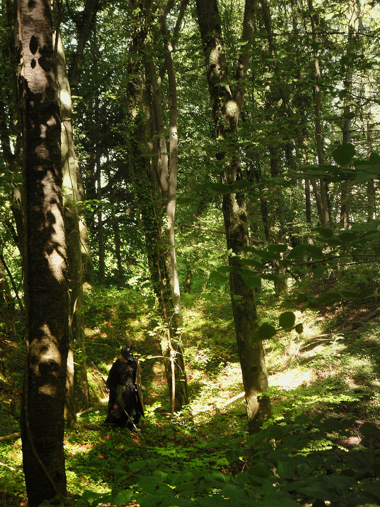 Middle Earth's Biggest Forest : Mirkwood. by Carancerth