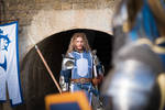 Commandant of the Alliance, Warcraft human Paladin