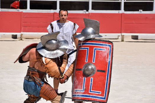 Gladiator Fight : Murmillo VS Thraex