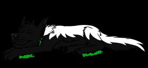 spiritwolf1999's Profile Picture