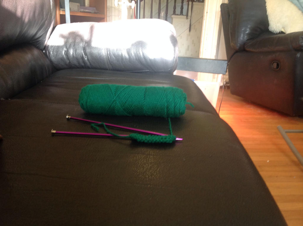 Knitting needles by BlueRoseKelly