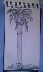 Phoenix Palm by I-Do-Care
