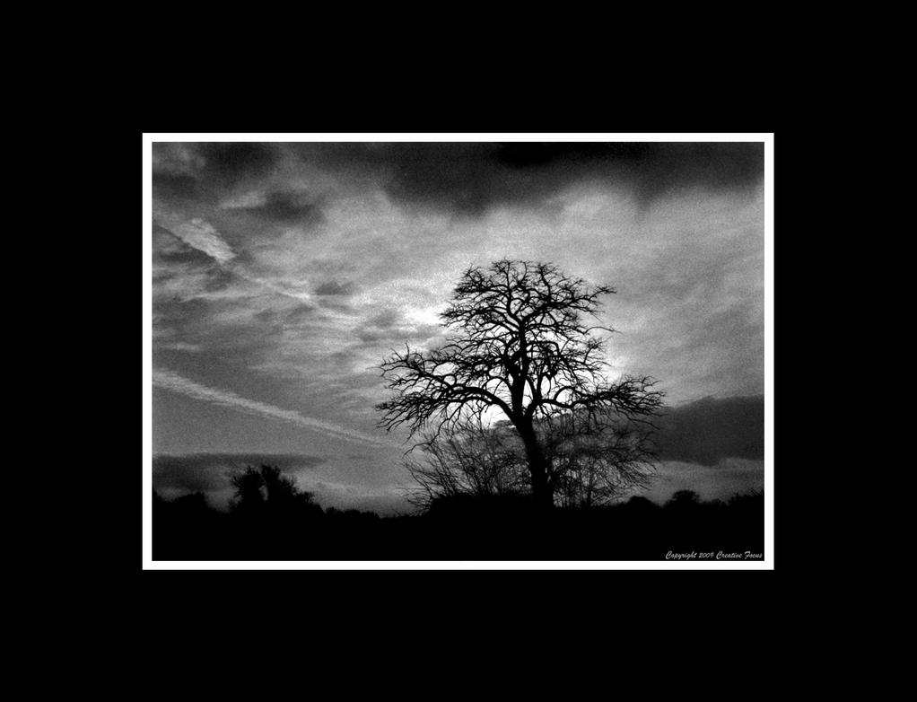 Quietus by Trippy4U