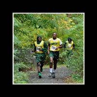Cross Country Track by Trippy4U