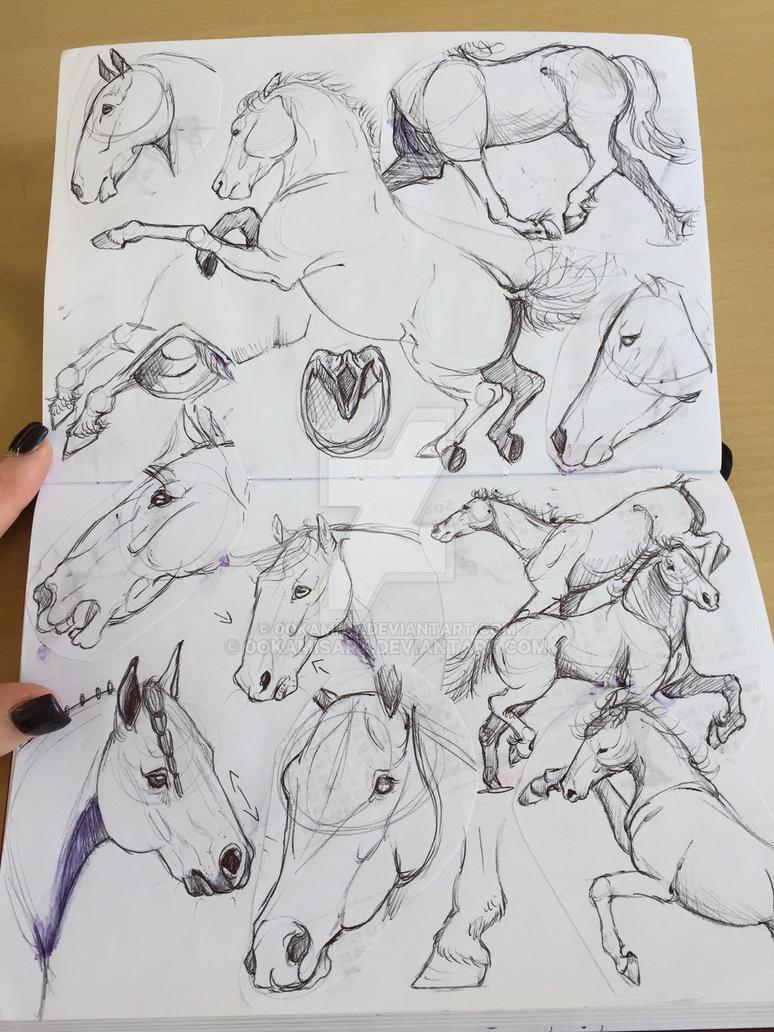 Horse Sketch  by 0okami117