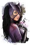 Catwoman Vixen