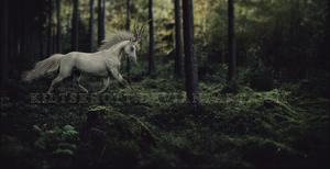 Aheshke: Fantasy by kiltsrhott