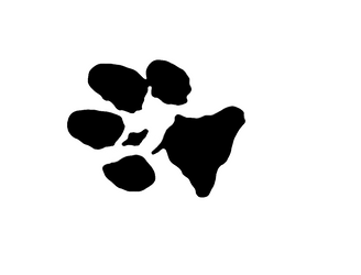 Paw print by illused