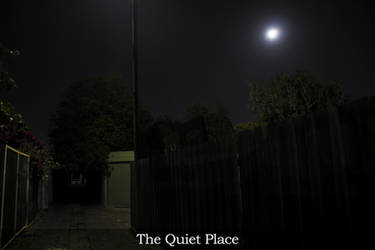 The Quiet Place by illused