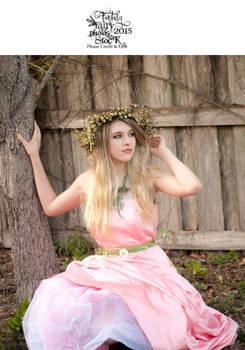 2015_Alyssa_pink_dress-28.jpg