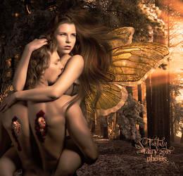 Broken wings by juliet981