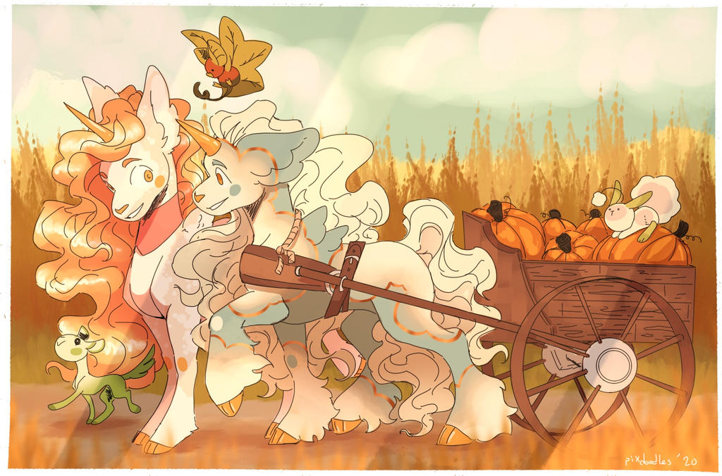 [p] Sunnie and syphia go pumpkin picking
