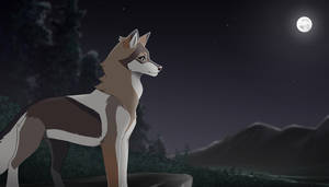 Calm Like The Night [Gift] by CristalWolf567
