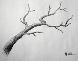 Dead Branch by EisenFeuer