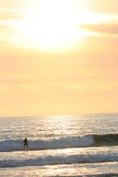 Steady Surf