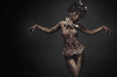 maneater dance by creativephotoworks