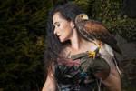~Harris hawk~ by creativephotoworks