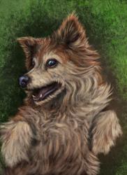 A Grassy Otis by MiffedMist