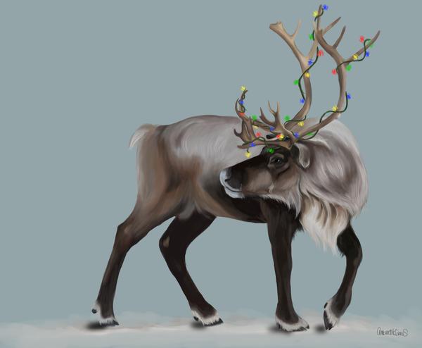 Christmas Reindeer 2012 by xamberelliex on DeviantArt