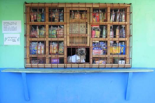 Dog Mans Shop