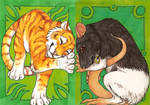 ACEOs - The rat and the tiger