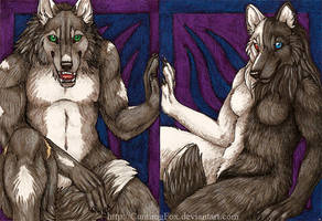 ACEOs - A wolf and his wolfess by Bear-hybrid