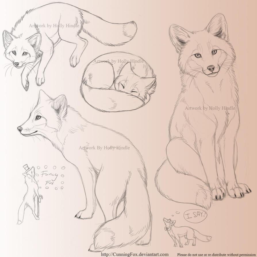 Red Fox Sketchpage By Bear Hybrid On Deviantart