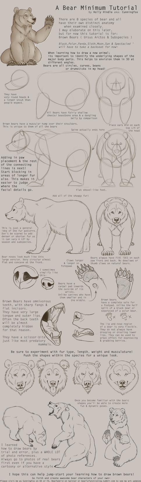 Brown Bear Tutorial by Bear-hybrid