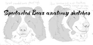 Spectacledbearadv by Bear-hybrid
