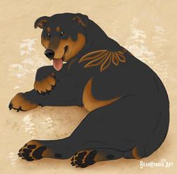 Canis Ursidae by Bear-hybrid
