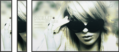 birdiekat Birdiekat_by_xkeepher-d5ttfe9