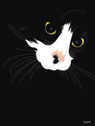 black cat by syeri