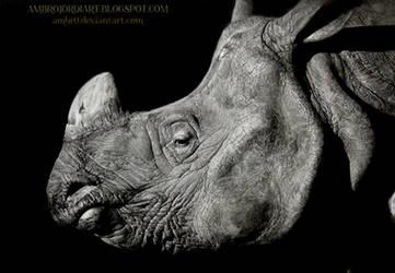 Rhinoceros by AmBr0