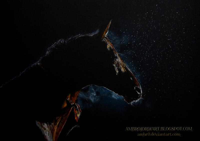 Horse in the Dark by AmBr0