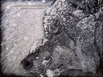 Wolf Scratchboard by AmBr0
