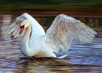 Swan Drawing by AmBr0