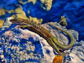 Lizard Sunbathing at Mount Vesuvius by AmBr0
