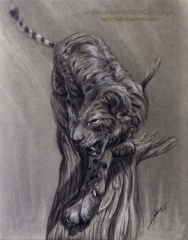 Saber Toothed Drawing by AmBr0