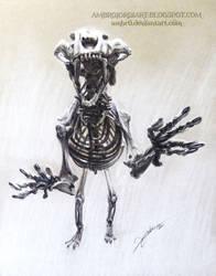 Saber Toothed Skeleton Drawing
