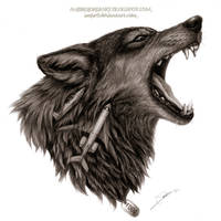 Wolf FOGG Drawing