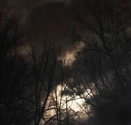 Bad Night by lilibat