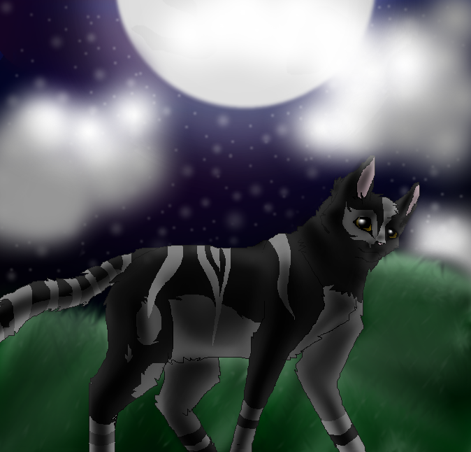 Moonshadow by TheDragonInTheCenter