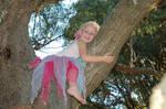 Little Tree Fairy 46