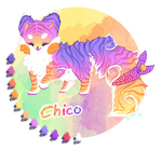 Chico the sushi cat - reference sheet