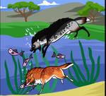 Fishing : Amadeus and Charmer2