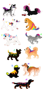 LGBT puppies for points - OPEN