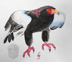 Bateleur Eagle in Watercolor by LiHy