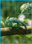 Chamouflaged
